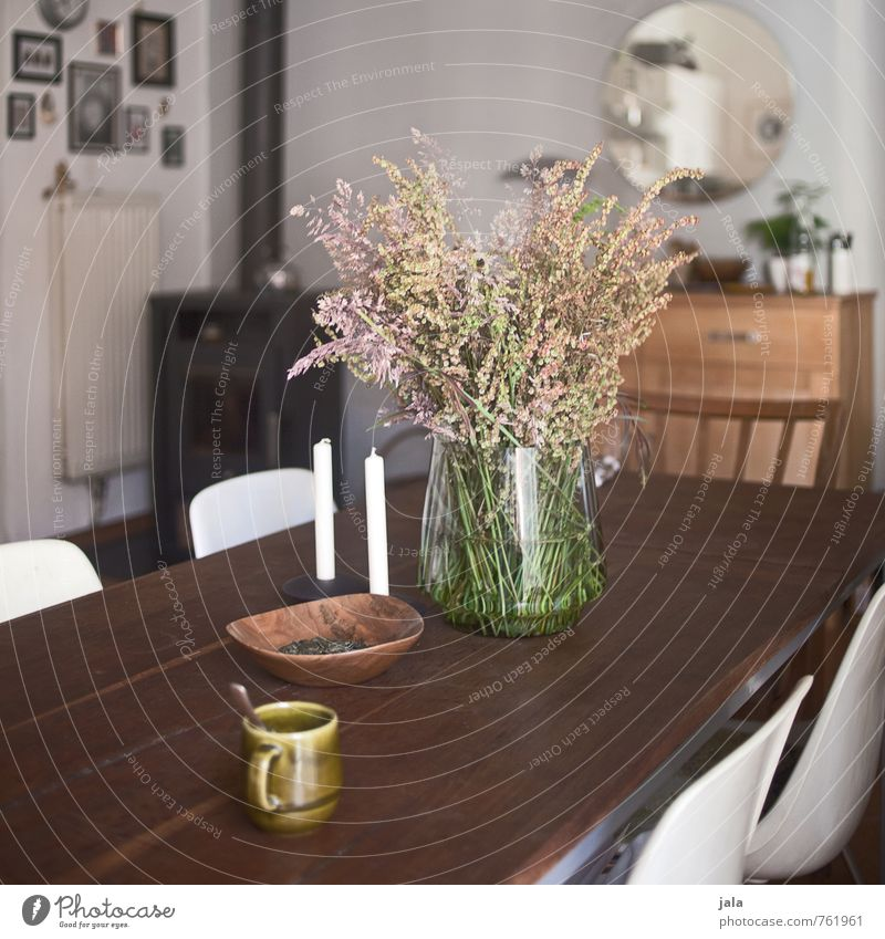 kitchen table Cup Living or residing Flat (apartment) Interior design Decoration Furniture Chair Table Mirror Kitchen Chest of drawers Plant Wild plant Bouquet