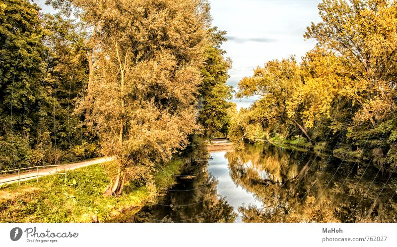 on the Nidda Nature Landscape Plant Water Autumn River bank Brook Outskirts Deserted Breathe Movement Discover Going Hiking Free Friendliness Happiness Natural
