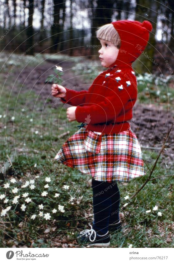 Child Flower Red Forest Small Cap Profile Checkered