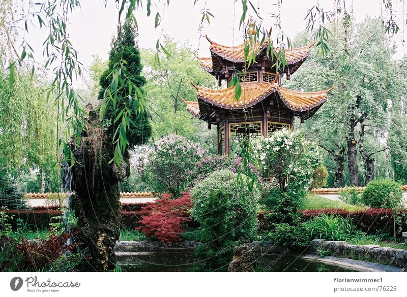 Chinese Garden China Calm Beautiful Plant Nature Relaxation