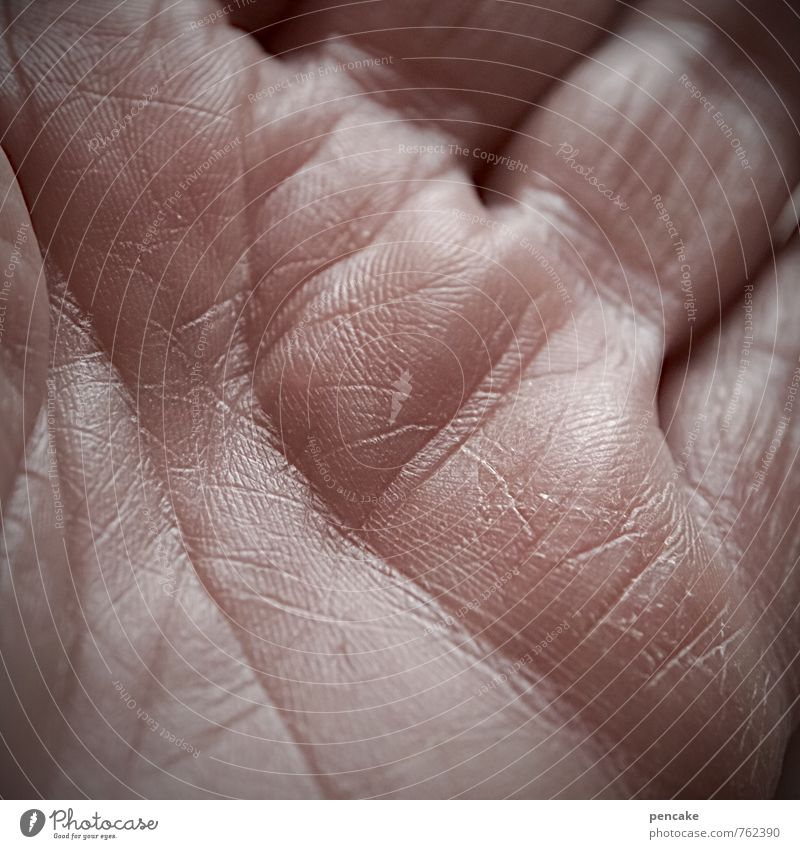 Human being Old Hand Adults Warmth Life Senior citizen Feminine Skin Authentic Future Sign Letters (alphabet) Mysterious Contact Trust