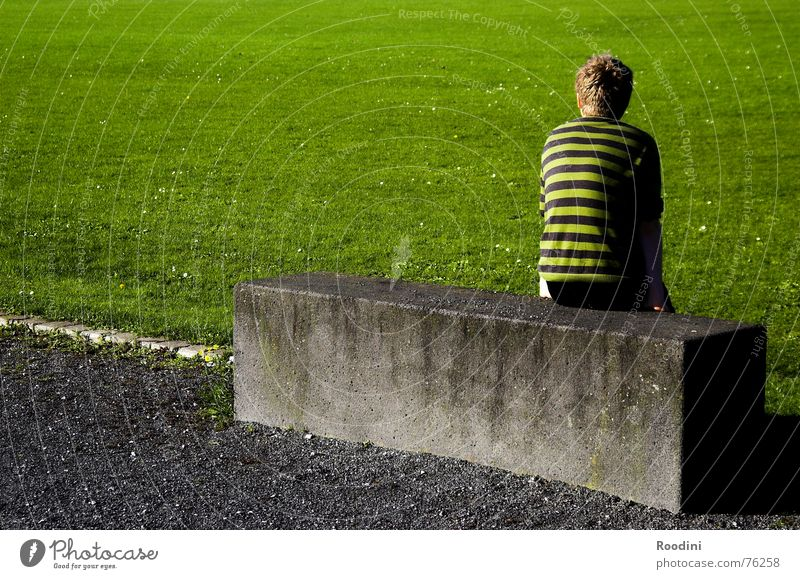 The Joker shortly before substitution Meadow Green Park Summer Evening Sunset Dusk Lawn for sunbathing Break Calm Looking Sit down Block Concrete block Cuboid