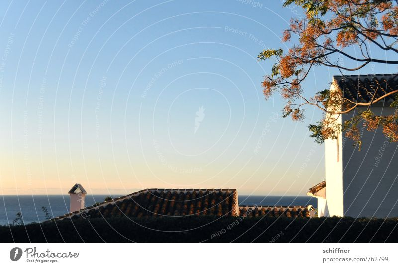 down-to-earth | with sea view Landscape Sky Cloudless sky Beautiful weather Plant Tree Ocean Village House (Residential Structure) Detached house Dream house