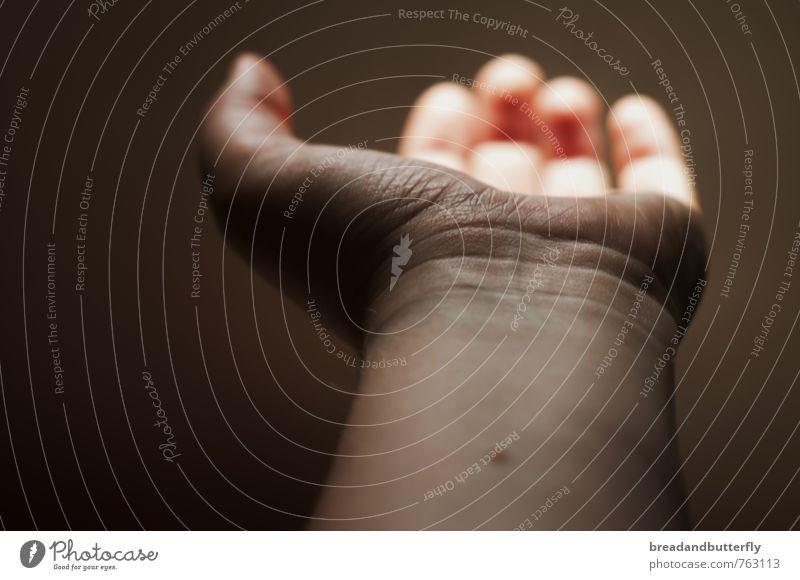 Hand Warmth Illuminate Hope Help Desire