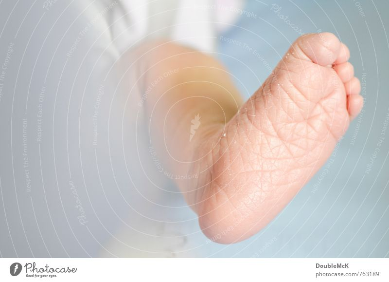 shrivelled feet Baby Feet Toes 1 Human being 0 - 12 months Lie Small Blue Pink Peace Infancy Naked Barefoot Colour photo Interior shot Close-up Detail