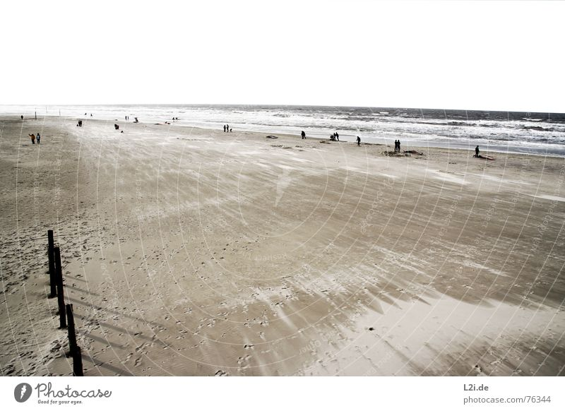 AT THE SEA Beach Ocean Lake St. Peter-Ording Waves Autumn Surfer Windsurfer Gale Vacation & Travel October Stand Nature Sand Water North Sea Human being Freedom