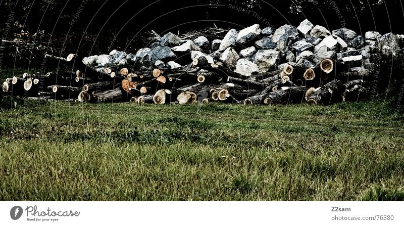 Nature White Green Forest Meadow Mountain Wood Stone Brown Rock Tree trunk Heap Saw