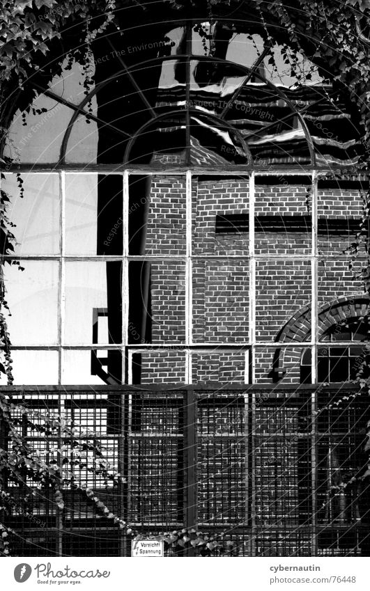 Window Building Glass Facade Industrial Photography Romance Brick Steel Past Distorted Mining Ivy Rung