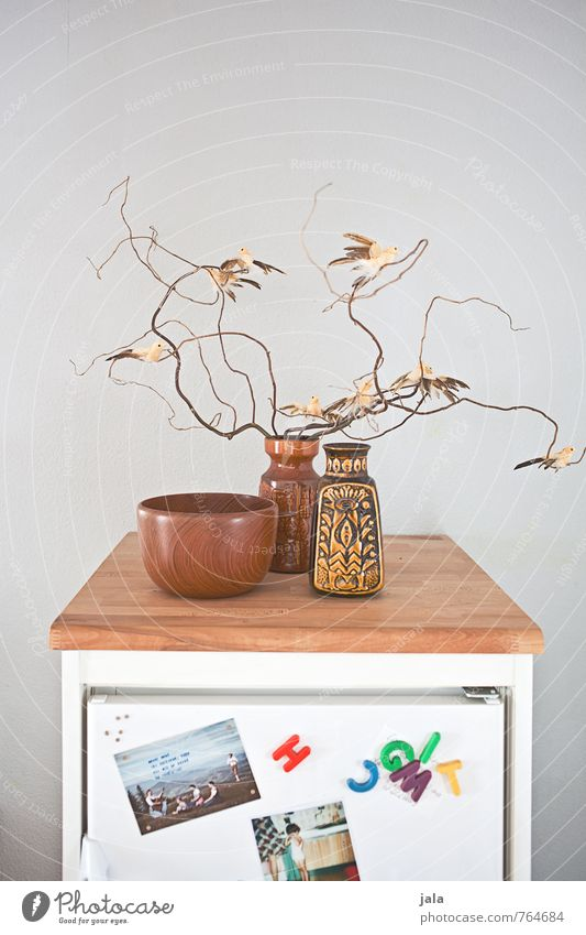 Interior design Bright Bird Flat (apartment) Living or residing Decoration Esthetic Branch Kitsch Kitchen Card Bowl Vase Odds and ends Icebox Magnet