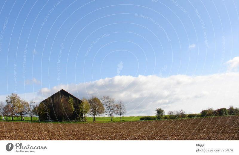 Sky Blue House (Residential Structure) Clouds Far-off places Autumn Wood Landscape Field To go for a walk Agriculture Hut Beautiful weather Barn
