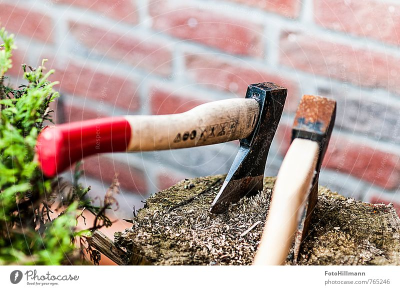 """THE AXE IN THE FOREST Leisure and hobbies Garden Agriculture Forestry Environment Nature Tree Movement """"Wood,"""" Axe Chop Woodcutter Tree trunk Musculature Force"""