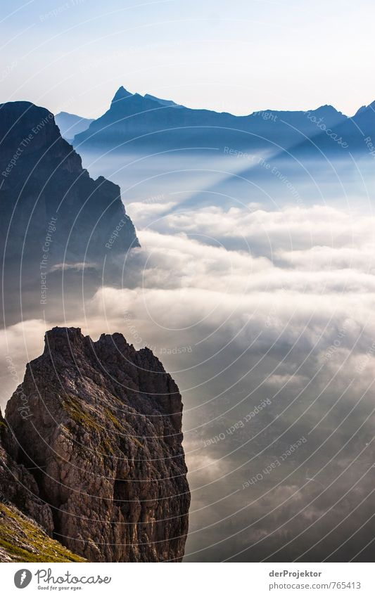 Nature Vacation & Travel Plant Summer Landscape Far-off places Mountain Environment Emotions Freedom Moody Rock Contentment Fog Tourism Hiking