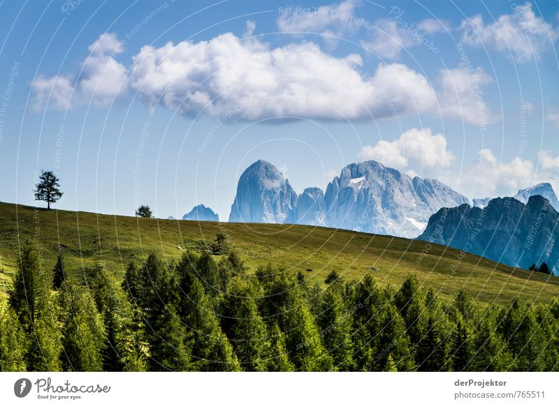 green-blue-white-dolomiti Vacation & Travel Tourism Trip Mountain Hiking Environment Nature Landscape Plant Elements Clouds Summer Tree Grass Meadow Forest Hill