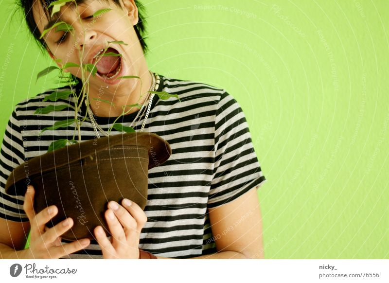 it's better to be carnivorous Man Stripe Green Plant Wall (building) Human being vegetraisch Hat Mouth Bite Appetite rico Face big mäc Lettuce Vegan diet eating