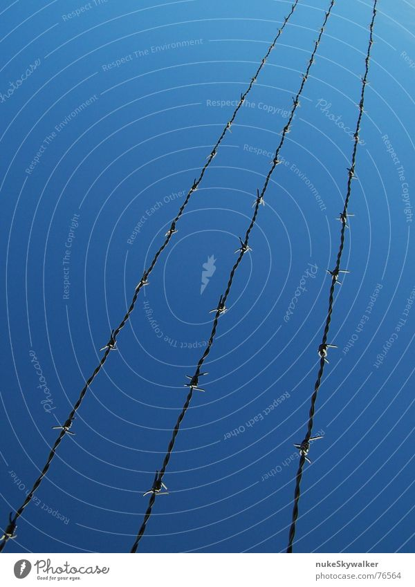 The last hurdle Barbed wire Captured Border 3 Diagonal Womanizer Sky Freedom Blue Line tightrope act