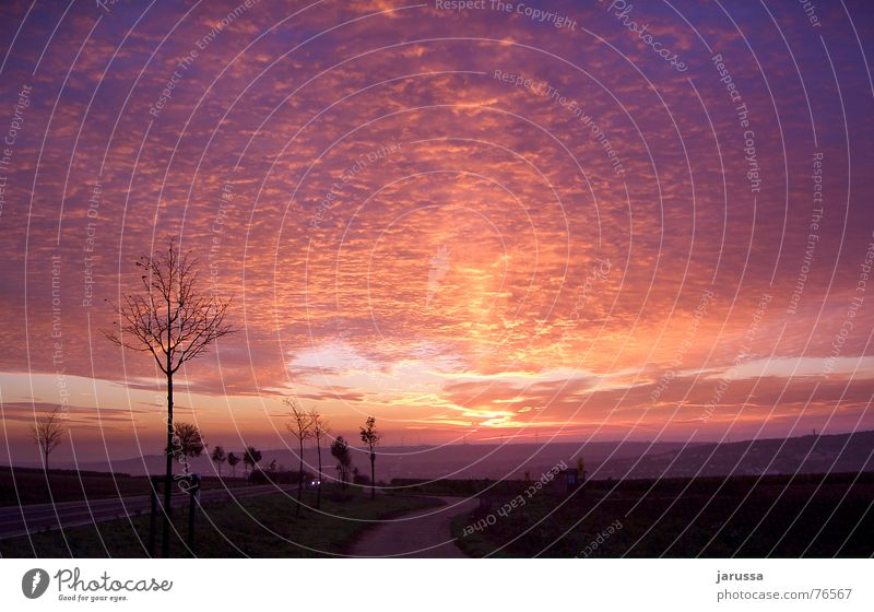 Sky Tree Red Clouds Street Violet Wind energy plant Hill Thunder and lightning Dusk Floodlight Valley