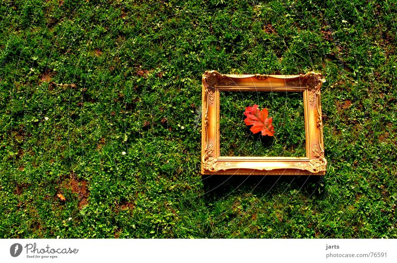 autumn picture Leaf Autumn Meadow Grass Autumn leaves Picture frame Art Image Frame framed jarts Gold Old