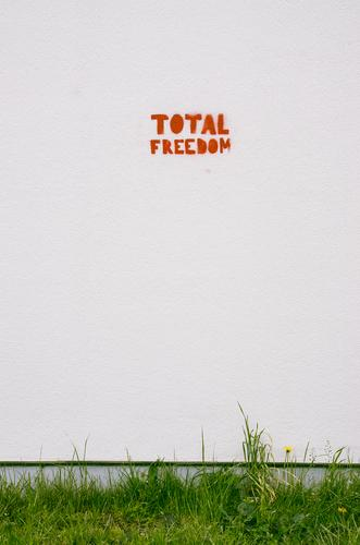 Total Freedom Art Wall (barrier) Wall (building) Stone Concrete Sign Characters Graffiti Fairness Creativity Desire Target Future Politics and state Wall plant