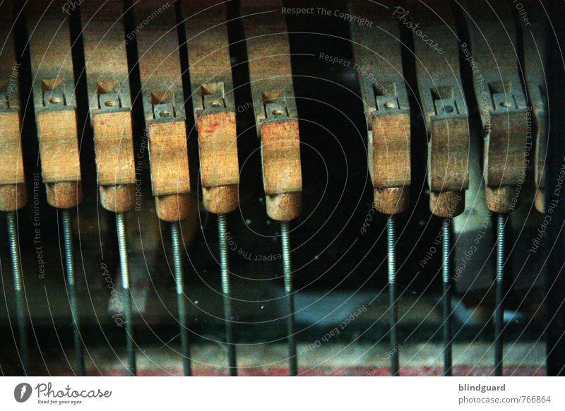 Missing Leisure and hobbies Music Wood Metal Broken Brown Black Silver Transience Accordion Tone Craft (trade) Old Keyboard Colour photo Interior shot Detail