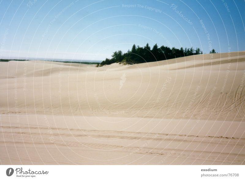 sandy desert Vantage point Physics Sand Desert Landscape Warmth Reflection canon