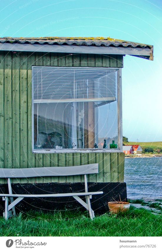 Close to the sea Fjord Black Window Vacation home Green Summer summer house wood house wooden house bench water Blue