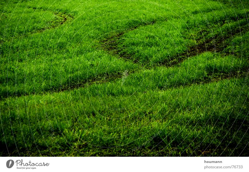 Tractose 3 Pattern Field Physics Green Grass tractor tracks shadows Shadow Warmth Tractor track