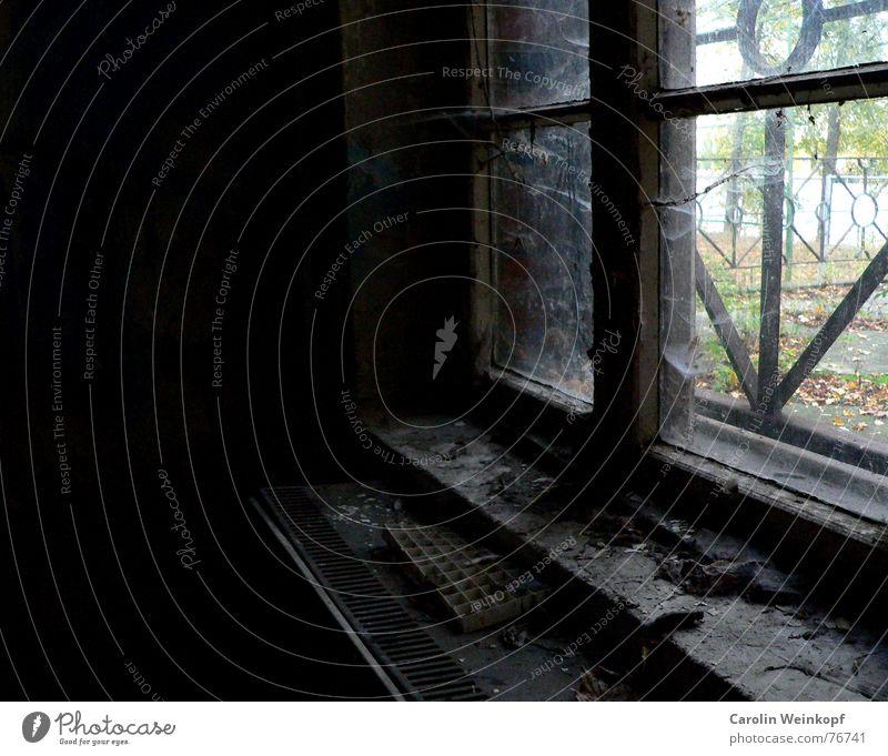 Crystal clear. Clarity Window Rung Lattice window Ruin Dirty Dreary Dark Autumn Treptow Treptow Park Window board Grief Beautiful Spider's web Dust Dusty Heater