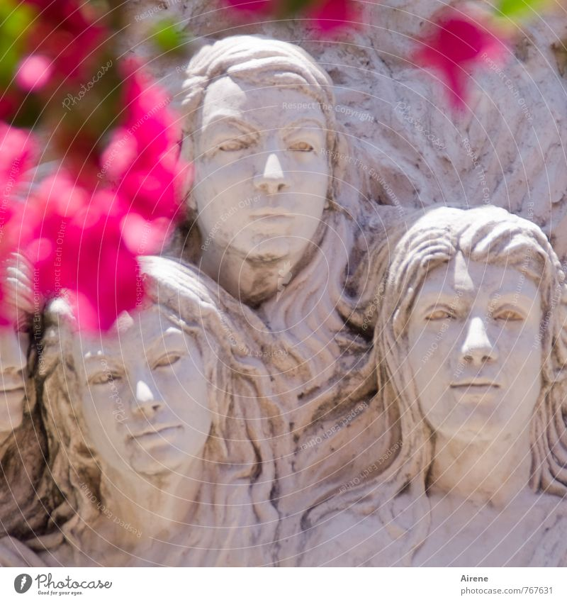 Human being White Calm Blossom Stone Head Art Pink Facade Esthetic Sculpture Know Work of art Cuba Wisdom Truth