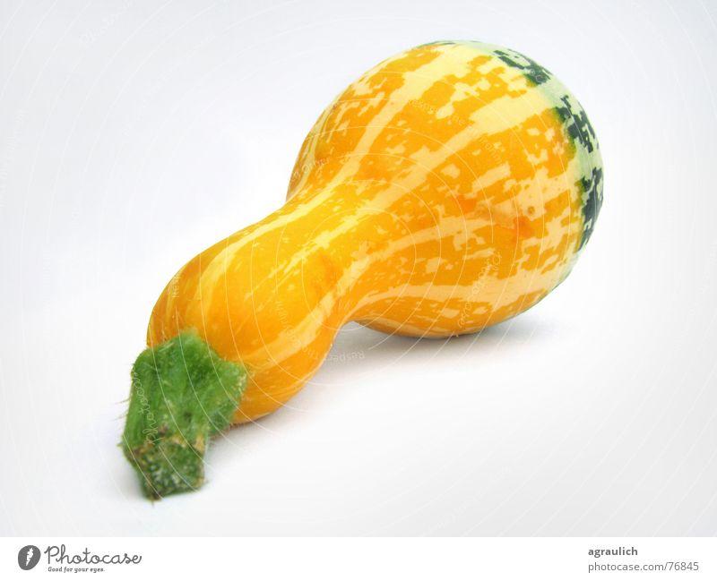 ornamental pumpkin Yellow Cooking Bottle gourd Calabash Hallowe'en Pumpkin Vegetable pumpkins