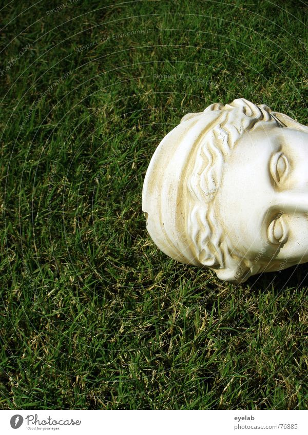 concrete head Green Grass White Bust Statue Marble Old Copy Space left Copy Space bottom Partially visible Detail of face Historic Sculpture Lawn