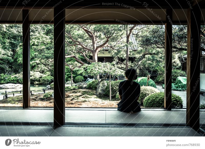Human being Woman Youth (Young adults) Relaxation Young woman Calm Adults Life Feminine Healthy Garden Meditative Contentment Sit Observe Wellness