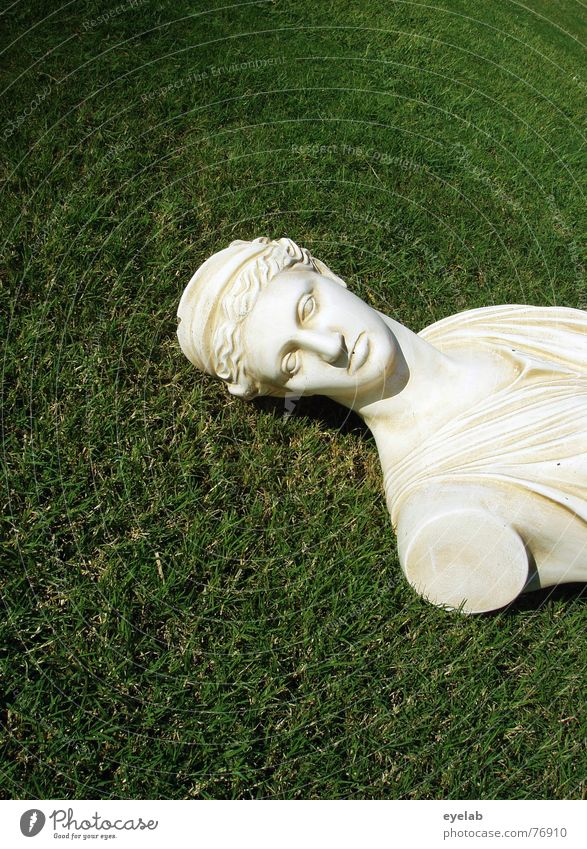 White Green Meadow Grass Lawn Historic Statue Sculpture Deities Marble Bust