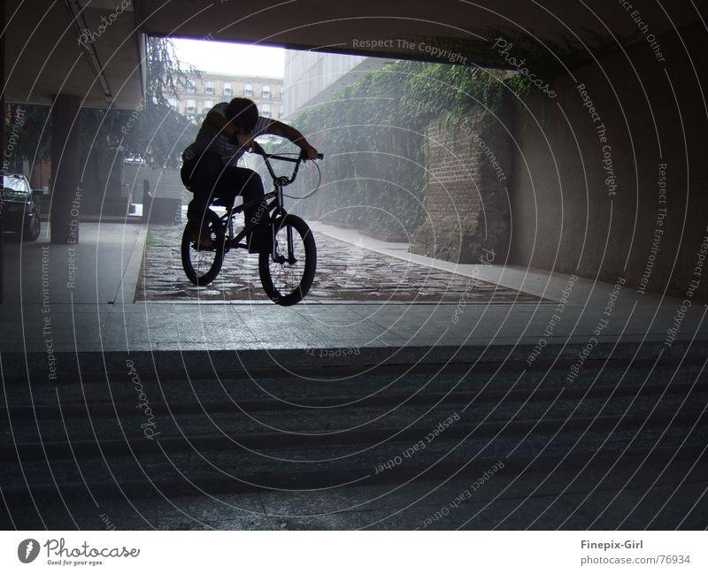shadow rider Bicycle Shadow fresh Dynamics Movement inspecting
