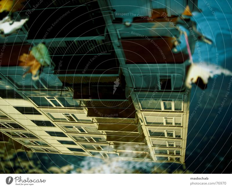 Sky City Blue Water Leaf Clouds House (Residential Structure) Dark Window Street Life Architecture Sadness Autumn Building Freedom