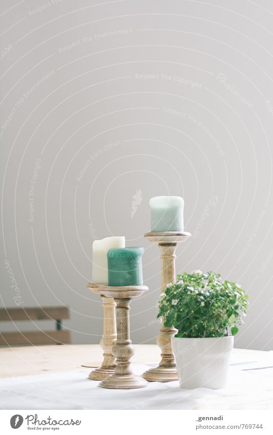 Green Flower Elegant Decoration Candle Putrefy Hip & trendy Considerable Tablecloth Chic Vase Mint green Dining room