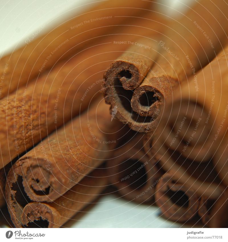 cinnamon Cinnamon Bay leaf Convoluted Herbs and spices Delicious Tree bark Rod Cooking Brown Food Baked goods Candy Christmas & Advent cinnamomum zinemin