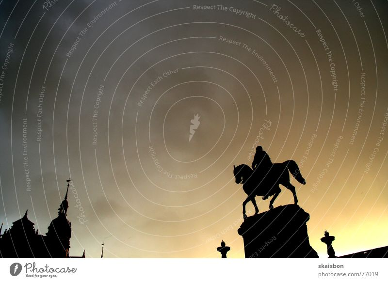 Sky City Clouds Architecture Religion and faith Art Germany Weather Gold Back Blaze Stand Horse Dresden Statue Living room