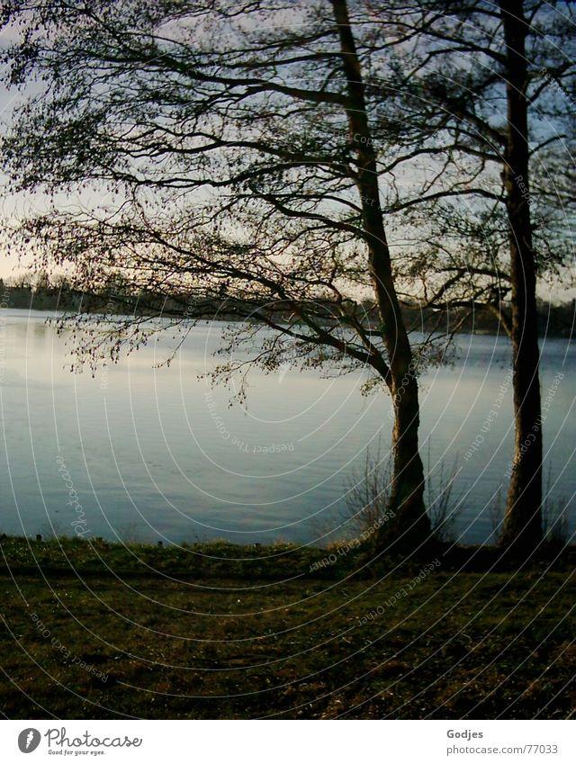 Nature Water Sky Tree Calm Life Autumn Lake Think Hope Romance Desire Longing Serene Americas Thought