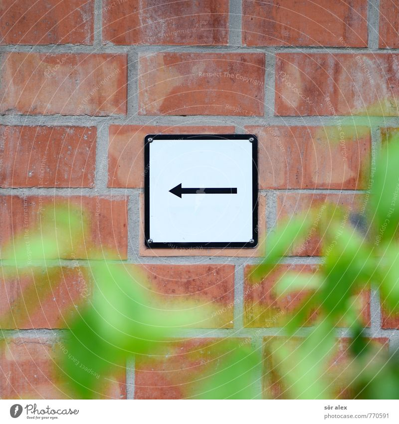 signage Career Success Plant Bushes Leaf Wall (barrier) Wall (building) Facade Brick Sign Signs and labeling Signage Warning sign Arrow Black White