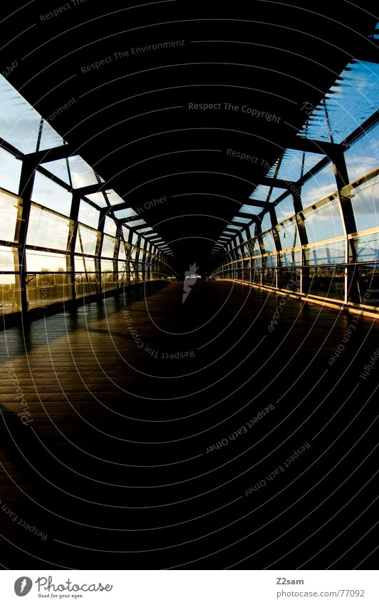 Sky Sun Blue Line Perspective Floor covering Tunnel Wooden floor Right ahead