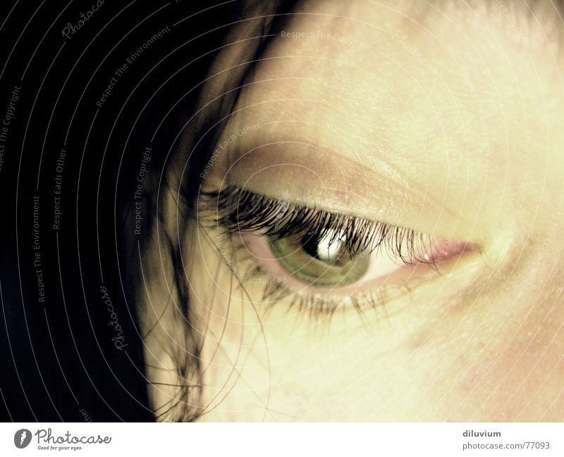 Green Face Eyes Hair and hairstyles Skin Eyelash Section of image Partially visible Pupil Iris Face of a woman Women's eyes Detail of face Eye colour Dark background