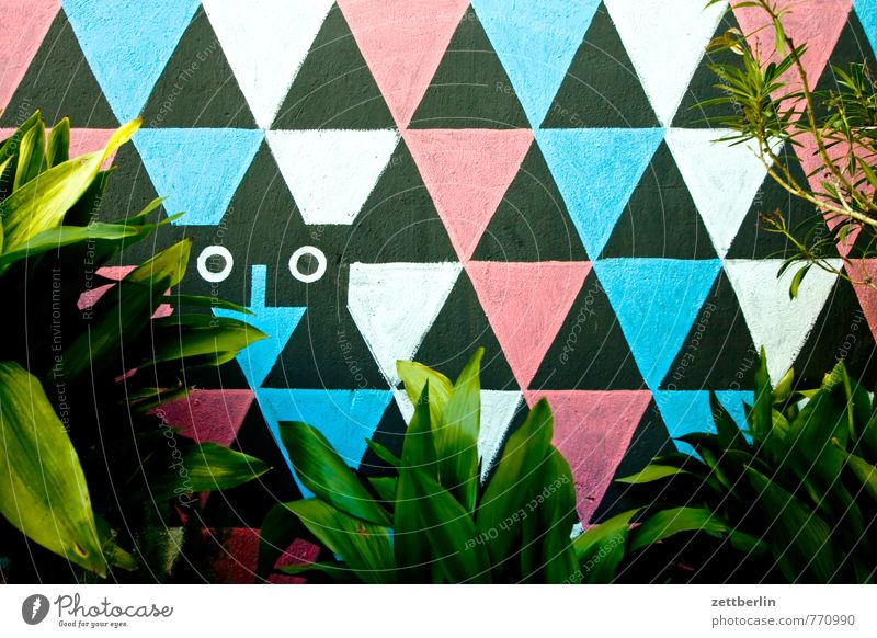 Wall painting behind green plants Culture Architecture House (Residential Structure) Wall (building) Mural painting Wall panelling Town Apartment Building