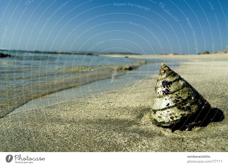 Water Beautiful Sky Ocean Blue Beach Vacation & Travel Freedom Warmth Sand Physics Hot Mussel Australia Paradise West