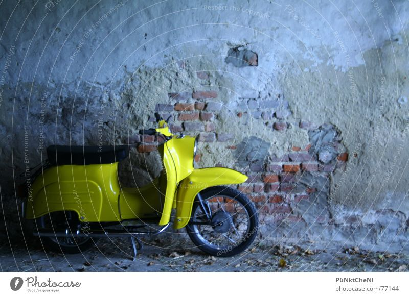 yellow bird Yellow Swallow Wall (building) Exhaust Driving Transport Engines Scooter Old Wheel Seating vehicle