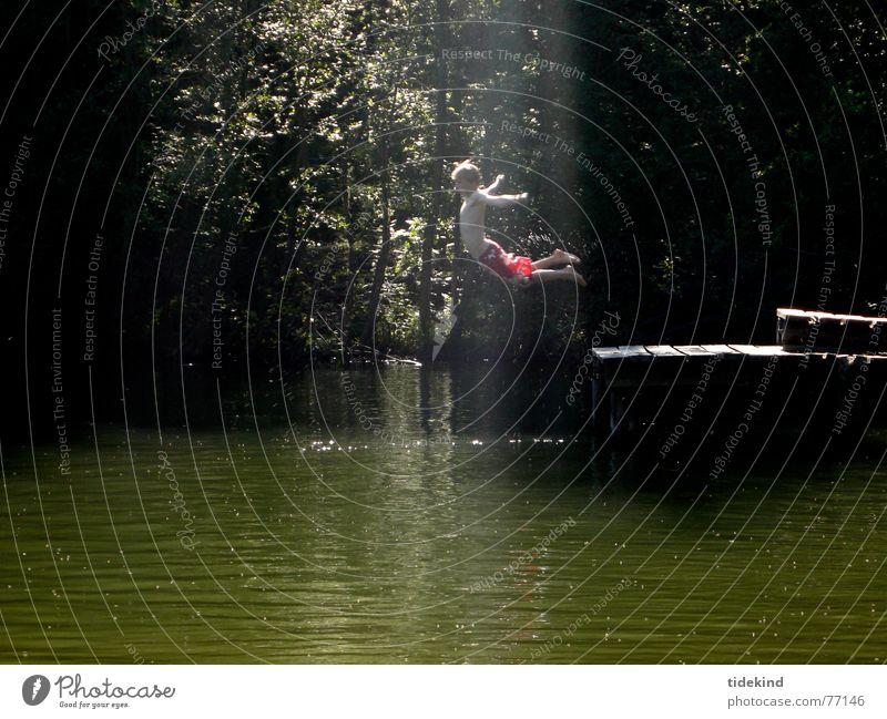 Water Summer Joy Dark Jump Lake Flying Swimming & Bathing Footbridge