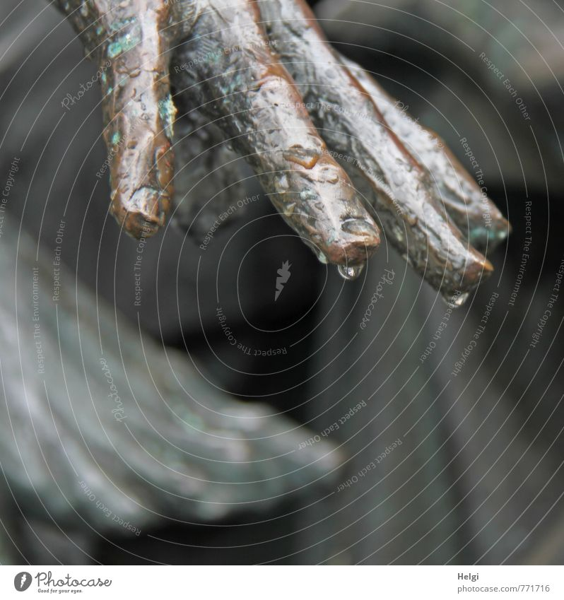 palm and foot Art Work of art Sculpture Hang Stand Exceptional Dark Uniqueness Brown Gray Moody Calm Unwavering Grief Death Culture Change Rain Drops of water
