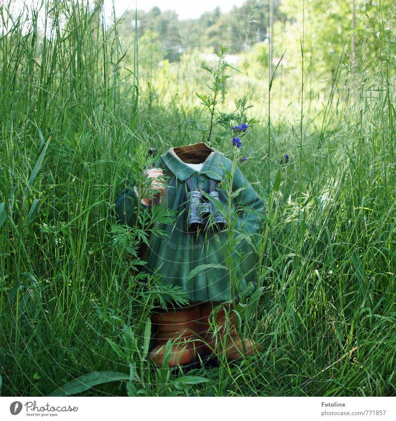 Nature Green Plant Summer Landscape Environment Meadow Grass Garden Broken Headless Garden gnome Forester