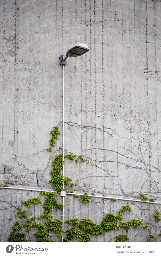 City Green Plant Wall (building) Wall (barrier) Lighting Gray Line Lamp Facade Arrangement Growth Illuminate Energy industry Concrete Technology