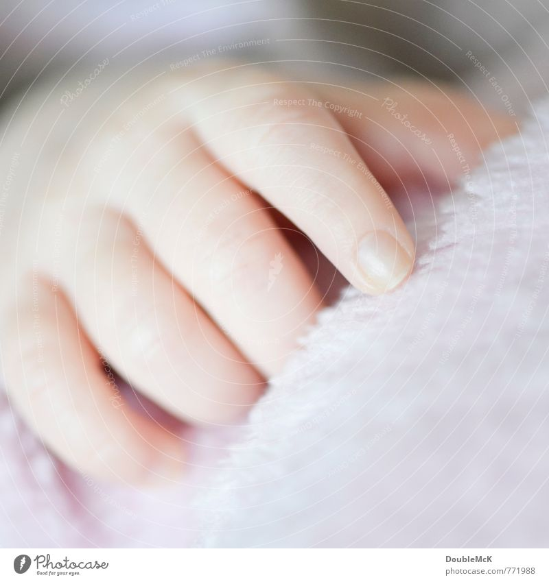 Human being Relaxation Red Hand Calm Small Natural Lie Contentment Infancy Baby Fingers Touch Soft Hope Delicate