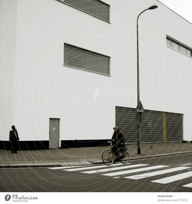 BIKESPOTTING Zebra crossing Man Masculine Human being Asphalt House (Residential Structure) Building Window Lantern Lamp Rule Style Simple Ghost town Empty